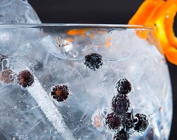 como-hacer-gintonic